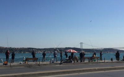 Reflections on Istanbul: Garo Berberian